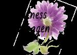 Wellness Massagen Karin Hötzinger